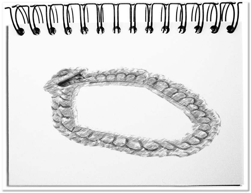 Schlangebeisstschwanz